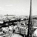 View From Notre Dame by Leonid Rozenberg