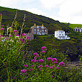View From Port Isaac by Kurt Van Wagner