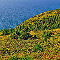 View From Skyline Trail In Cape Breton Highlands Np-ns by Ruth Hager