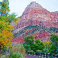 View From South Campground In Zion Np-ut by Ruth Hager