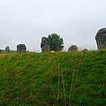 View From The Henge by Denise Mazzocco