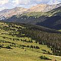 View From The Trail Ridge Road. by Richard Smith