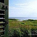 View From The Window At East Point Light by Nancy Patterson