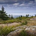 View From Top Of Cadilac Mountain In Acadia National Park by Randall Nyhof
