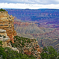 View From Walhalla Overlook On North Rim Of Grand Canyon-arizona  by Ruth Hager