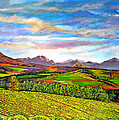 View From Warwick Vineyard by Michael Durst