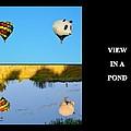 View In A Pond by AJ  Schibig