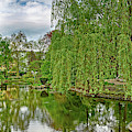 View Of A Botanical Garden, Krakow by Panoramic Images