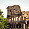 View Of Colosseum by Prints of Italy