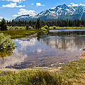 View Of Mount Tallac From Taylor Creek Beach Lake Tahoe by LeeAnn McLaneGoetz McLaneGoetzStudioLLCcom
