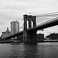 View Of New York From Beneath The Brooklyn Bridge New York by Joe Fox