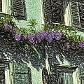 View Of Purple by Patti Parish