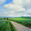 View Of Road Passing Through A Field by Panoramic Images