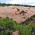 View Of Rock Dome Surface From Sandal Trail Across The Canyon In Navajo National Monument-arizona by Ruth Hager