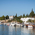 View Of Spetses Harbour by Paul Cowan