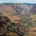 View Of Waimea Canyon by Suzanne Luft