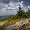 View On Top Of Cadilac Mountain In Acadia National Park by Randall Nyhof