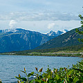 View One Kluane Lake From Cottonwood Campground Near Destruction Bay-yk   by Ruth Hager