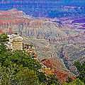 View Seven From Walhalla Overlook On North Rim Of Grand Canyon-arizona by Ruth Hager