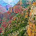 View Six From Walhalla Overlook On North Rim Of Grand Canyon-arizona by Ruth Hager