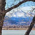 View Through The Trees To Longs Peak by James BO  Insogna