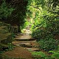 View To The Secret Garden by Deborah Benbrook