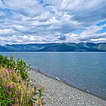 View Two Kluane Lake From Cottonwood Campground Near Destruction Bay-yk by Ruth Hager