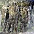 Vigelands Fountain by David Berg