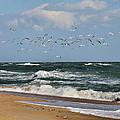 Vilano Beach by Nikki Brubaker