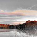 Village Creek Ar Morning by Lizi Beard-Ward