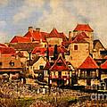 Village De Fleuris by Lianne Schneider