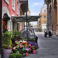 Village Flowershop by Sharon Foster