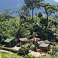village in eastern Madagascar by Rudi Prott