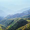Village Of Mist 13 by Afrison Ma
