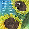 Vince's Sunflowers 1 by Debbie DeWitt