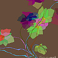 Vines by Ursula Freer