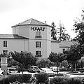 Vineyard Creek Hyatt Hotel Santa Rosa California 5d25866 Bw by Wingsdomain Art and Photography