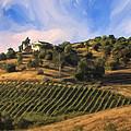 Vineyard Near Avila Beach by Dominic Piperata