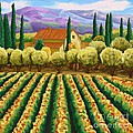 Vineyard With Olives Tuscany by Tim Gilliland