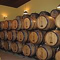 Vineyards In Va - 121237 by DC Photographer