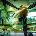Vintage Airplane Three by Susan Garren