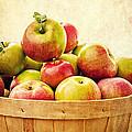 Vintage Apple Basket by Edward Fielding