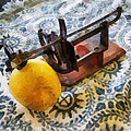 Vintage Apple Peeler by Susan Savad