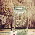 Vintage Ball Mason Jar by Terry DeLuco