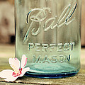 Vintage Ball Perfect Mason by Terry DeLuco