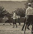 Vintage Baseball by Priscilla Burgers