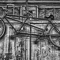 Vintage Bicycle Built For Two In Black And White by Kathleen K Parker