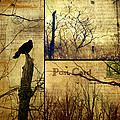 Vintage Birds Collage by Gothicrow Images