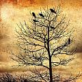 Vintage Blackbirds On A Winter Tree by Roxy Hurtubise