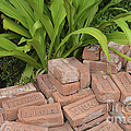 Vintage Brick by Dale Powell